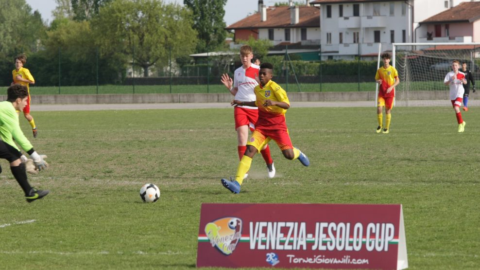 VE cup 19